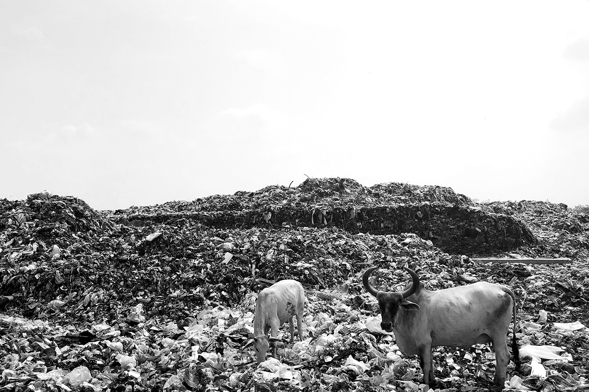 Waste dumped in landfills and dumpyards degrade and produce harmful gases which can be controlled using an odor sensor.